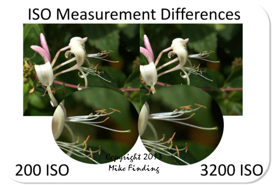 ISO Settings Differences - image graphic